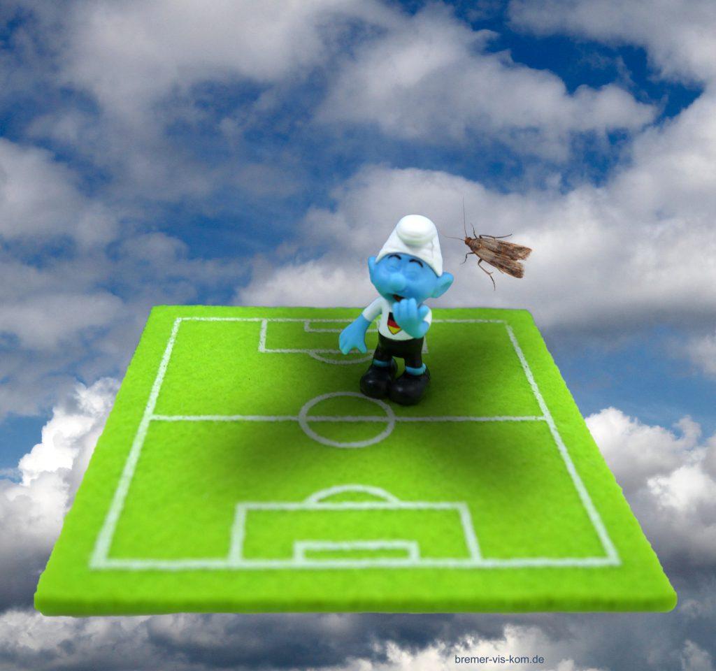 Fußball Schlumpf Motte